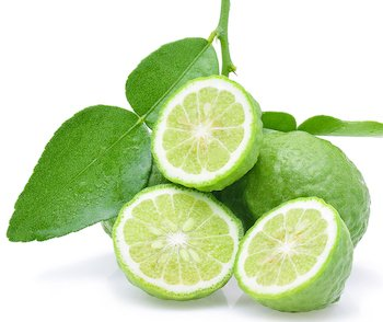 Bergamot Plant - fruit and leaves