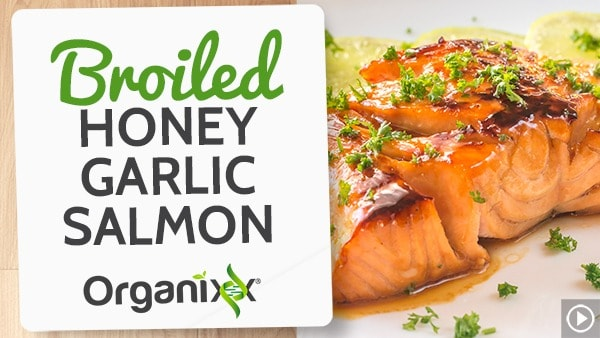 Broiled Honey Garlic Salmon