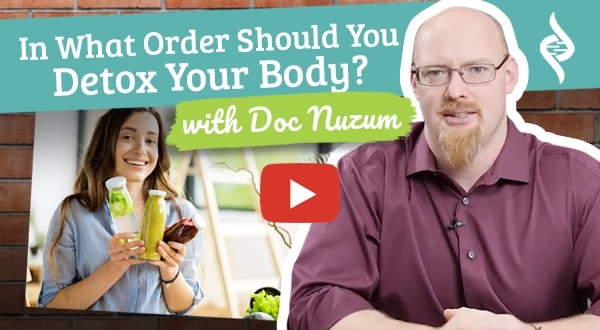 In What Order Should You Detox Your Body?