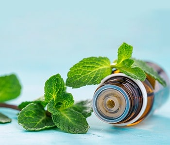 Mint Essential Oil and fresh mint leaves